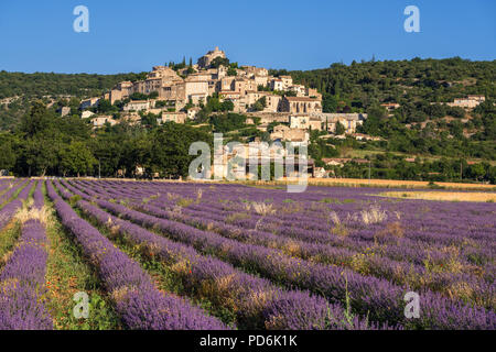 The village of Simiane-la-Rotonde in summer with lavender fields. Alpes-de-Hautes-Provence, Alps, France - Stock Image