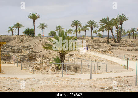 5 May 2018 Tourists walk through the palm trees and view the ruins in the ancient city of Meggido in Northern Israel. This place is otherwise known as - Stock Image