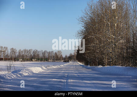 empty rural road in a forest in winter sunny day - Stock Image