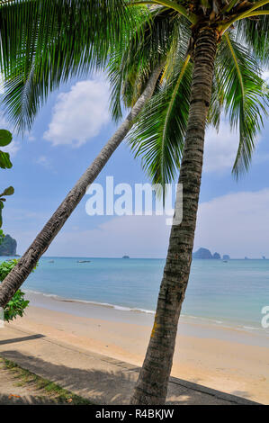 A hot sunny palm fringed beach overlooking the sea in Penang Malaysia. - Stock Image