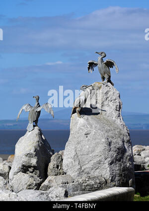 Cormorant bird sculpture. The Tern Project. The Promenade, Morecambe, Lancashire, England, United Kingdom, Europe. - Stock Image