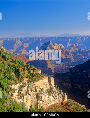 View across Grand Canyon from North Rim with San Francisco Peaks in distance, Grand Canyon National Park, Arizona, - Stock Image