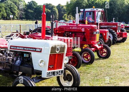 david brown selectamatic 880, vintage tractor, vintage tractors, old tractors, tractor show, antique tractors, classic tractors, classic, tractor, - Stock Image