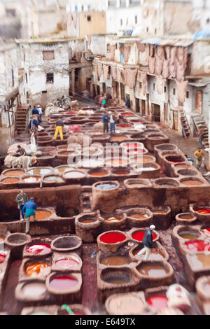 The tannery in Fez Morocco - Stock Image