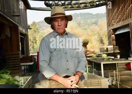 Male farmer portrait in packing & washing shed, Peter, co-owner of Front Porch Farm, organic 110 acres, Healdsburg, California, USA. - Stock Image