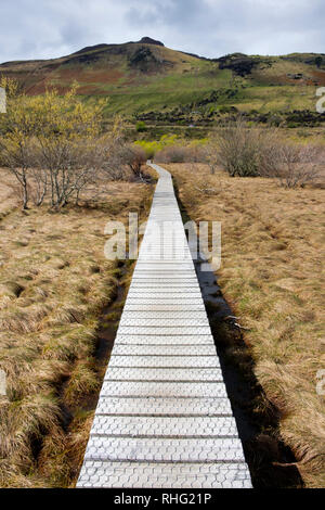 Boardwalk through marsh in Glenorchy, South Island, New Zealand - Stock Image