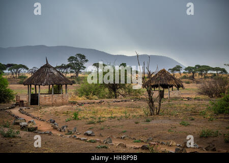 Camp in Ruaha, middle of wildlife, Africa, safari - Stock Image