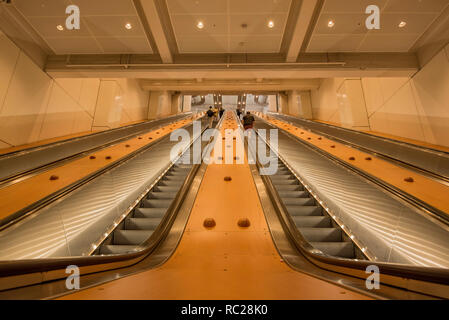 New steel escalators at Wynyard station that have replaced the 87 year old wooden ones. The old wooden ones are now a sculpture hanging from above. - Stock Image