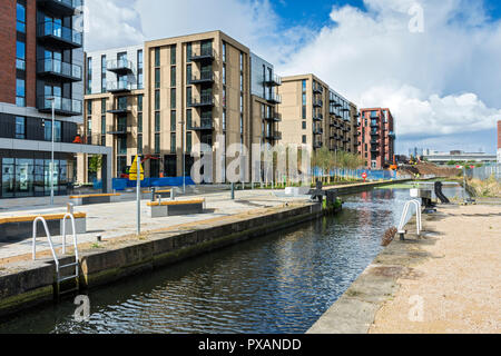 Apartments blocks at the Middlewood Locks development, from the Manchester, Bolton and Bury Canal, Salford, Manchester, England, UK - Stock Image