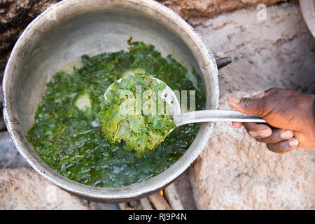Kisambo Village, Yako, Burkina Faso, 28th November 2016;  Miriam Ouedraogo,, cooking a meal for 10, includes moringa leaves just picked from the village garden as a main ingredient. - Stock Image