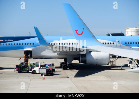 TUI Boeing aircraft on the apron of a busy airport . GSE are servicing a plane. The planes clearly display the TUI logo and on the planes tail - Stock Image