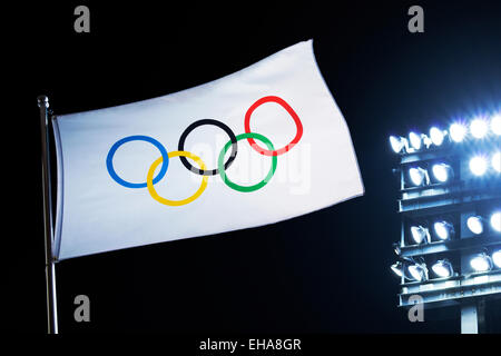 The Olympic Flag - Stock Image