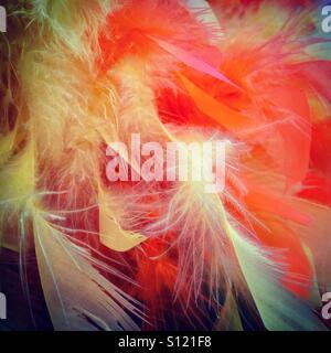 Feather boa - Stock Image