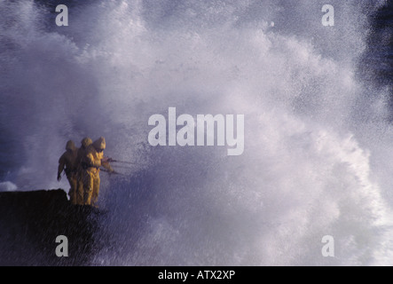 3 fishermen on a cliff engulfed by an ocean wave - Stock Image