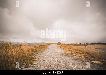 Dirt trail with golden grass on both sides under a cloudy sky in the indian summer - Stock Image
