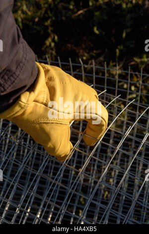 Yellow gloved male hand grasping metal chicken wire - Stock Image