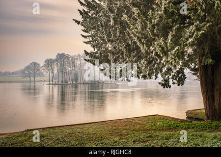 Melbourne pool in Derbyshire is frozen over after a heavy frost. - Stock Image