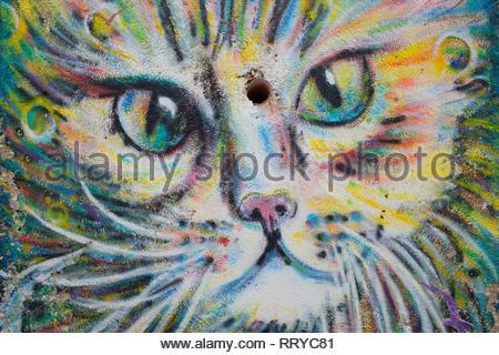 Sweet Cat face Mural graffiti drawing street art - Stock Image