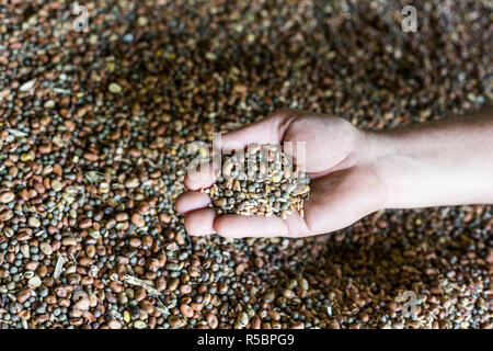 Organic protein blend for organic farming, France. - Stock Image