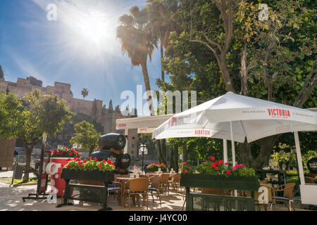Bodegas El Pimpi Malaga, nice terrace for coffee or lunch opposite the Roman Theater and the Alcazaba. Morning sun. - Stock Image