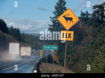 Road Signs warn of risk of Elk on Vancouver Island's Highway 19 near the Cook Creek Area in BC Canada. - Stock Image