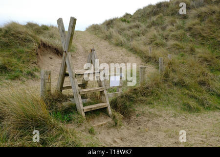 21 March 2019 - Sauton, North Devon, UK - A wooden ladder stile in the Braunton Burrows, near Saunton Beach - Stock Image