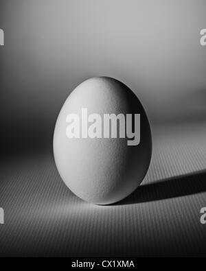 Simplicity - a white egg photographs on a white textured surface. - Stock Image