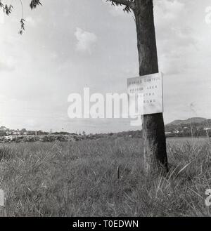 1950s, Rabies, animal disease notice on tree, Uganda, Africa. Notice reads 'Rabies Control. Poison Area', Obutwa, Sumu. - Stock Image