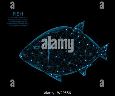 Fish low poly model, animal in polygonal style, underwater world wireframe vector illustration made from points and lines on a black background - Stock Image