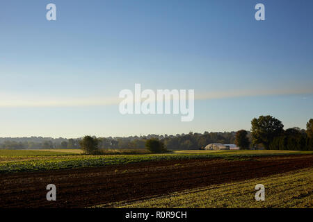 Harvested fields with a hoop house in the distance in late fall, Amish Country, Lancaster County, Pennsylvania, USA - Stock Image