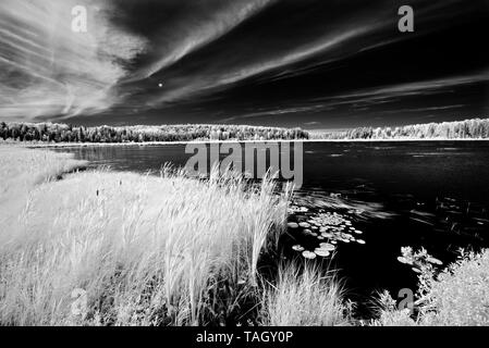 Old Woman Lake Near Sioux Narrows, Ontario, Canada - Stock Image