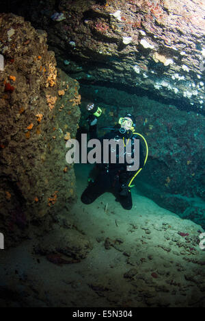 young female diver kneeling in cave using dive torch to light the marine life - Stock Image