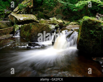 Mallyan Spout Waterfall Goathland Aidensfield North Yorkshire Moors England United Kingdom UK Great Britain GB water - Stock Image