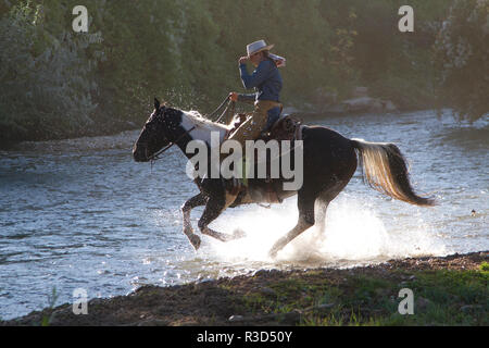 Usa, Wyoming, Shell, The Hideout Ranch, A Cowgirl Crossing the River on Horseback (MR, PR) - Stock Image