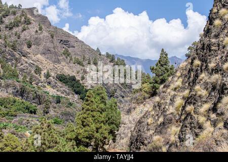 Volcanic landscape and ravine at Barranco de las Angustias, La Palma, Canary Islands, Spain - Stock Image