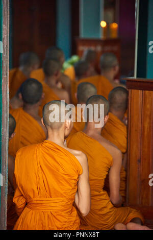 An unidentifiable group of young Buddhist monks wearing orange robes at their evening prayers in Phnom Penh, Cambodia. - Stock Image