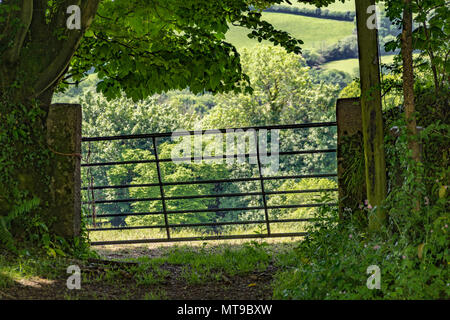 Farm / field gate silhouetted against sunlit countryside beyond. - Stock Image