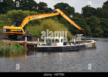 JS180 tracked excavator unloading dredged waste from a Broads Authority barge on the River Yare, Norfolk Broads - Stock Image