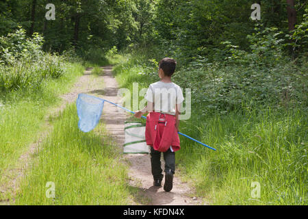 little boy with butterfly net in Botany Wood near Chiddingfold, West Sussex - Stock Image