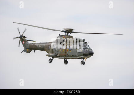 Swiss Air Force AS332M1 Super Puma transport helicopter - Stock Image