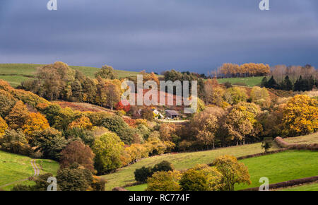 UK. A remote house on the Welsh borders, surrounded by trees in autumn colour - Stock Image
