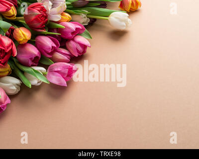 Colorful  bouquet of tulips on orange background.  Top view. - Stock Image