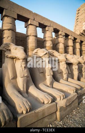 Statues at Karnak Temple, Karnak, Luxor, Egypt - Stock Image