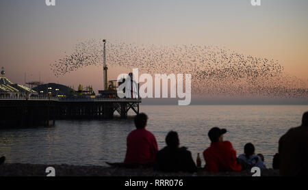 Brighton, UK. 26th Jan, 2019. Starlings explode in the skies above Brighton beach this evening as they perform their daily murmuration as the unusually warm sunny weather continues throughout Britain with some areas reaching over 20 degrees centigrade again Credit: Simon Dack/Alamy Live News - Stock Image