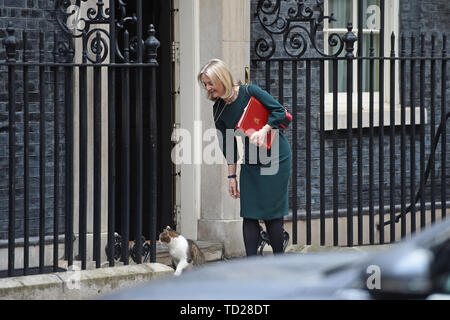 Chief Secretary to the Treasury Liz Truss arrives for a cabinet meeting at 10 Downing Street, London. - Stock Image