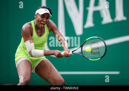 Edgbaston Priory Club, Birmingham, UK. 21st June, 2019. WTA Nature Valley Classic tennis tournament; Venus Williams (USA) hits a backhand in her quarterfinal match against Ashleigh Barty (AUS) Credit: Action Plus Sports/Alamy Live News - Stock Image