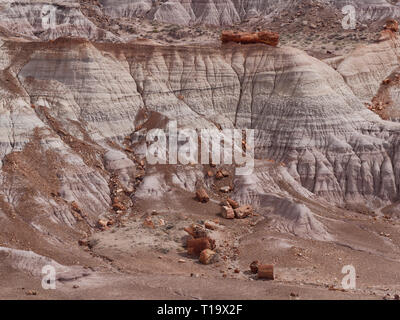 Petrified logs and the Painted Desert. Blue Mesa area, Petrified Forest National Park, Arizona. - Stock Image