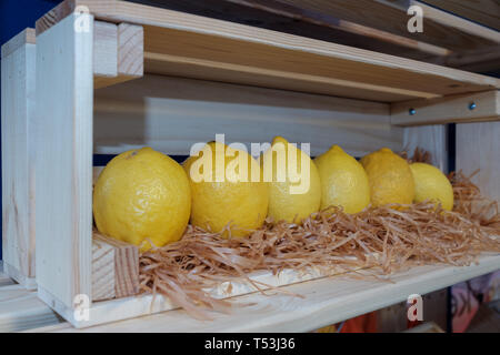 Row of big yellow organic lemons in a wooden shelf - Stock Image