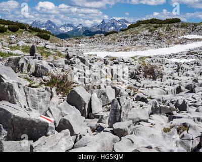 Gottesacker plateau near mountain Hoher Ifen, mountain range in the back, Kleinwalsertal, Austria - Stock Image