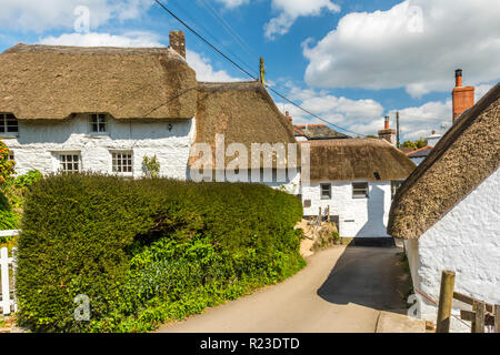 Picturesque thatched houses in the village of Helford, Cornwall, England - Stock Image